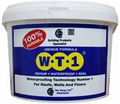 CT1 WT1 Waterproofing, Repair and Seal 5kg 150115